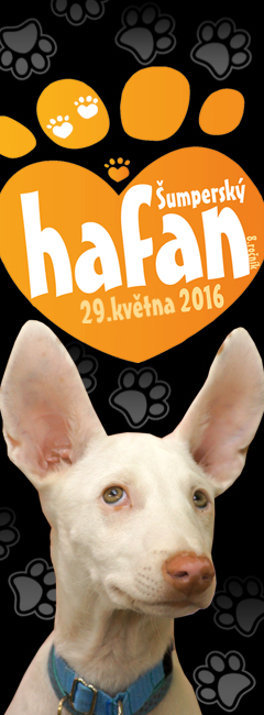 Hafan 2016