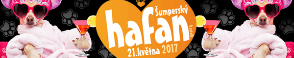 Hafan 2017