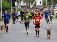 Zábřežák Pavel Zitta zve běžce na Šumavu