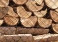Nejen palivové dřevo je pod drobnohledem ČOI