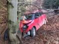 Řidička na Jesenicku čelně narazila do stromu