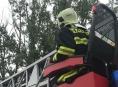 VIDEO: Hasiči sundávali ze stromu model letadla