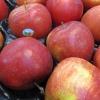 Inspekce upozorňuje na závadnou potravinu            zdroj foto: SZPI