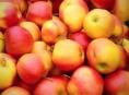 Potravinářská inspekce zjistila pesticid chlorpyrifos