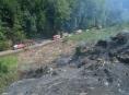 Požár lesa v Bedřichově likvidovalo sedm jednotek hasičů
