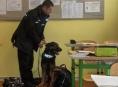 Snědl policejní pes svačinu ve škole?