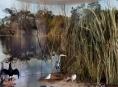 Expozice Příroda Olomouckého kraje vyhrála soutěž