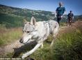 Rock Point - Horská výzva 2013 končila o víkendu v Krkonoších