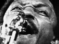Blues Alive:Výstava Miroslava Novotného:Retrospektiva