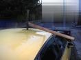 Zaražený krumpáč ve střeše auta našel řidič v Olomouci