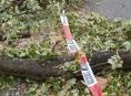 Hasiče na Štědrý den zaměstnal hlavně vítr