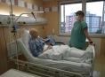 FN Olomouc pokoří příští týden hranici 1000 transplantací kostní dřeně