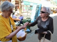 Lidé letos více na Šumperku podpořili boj proti rakovině