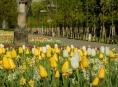 V Olomouci začíná letní Flora