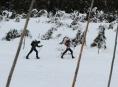 Ochranáři Jeseníků stopli Zimní výzvu