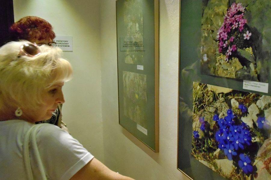 Šumperk - vernisáž výstavy