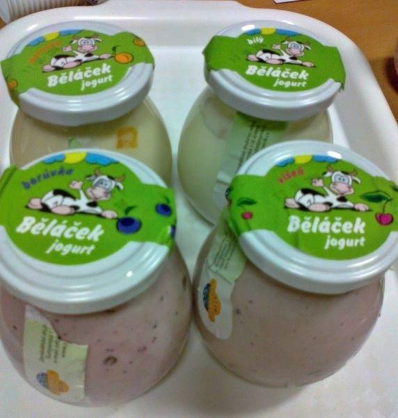 jogurt Běláček bílý
