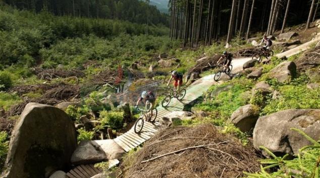 V Rychlebských stezkách se vážně zranil cyklista