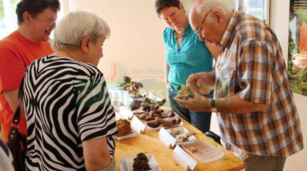 Šumperská první výstava hub se konala v roce 1999