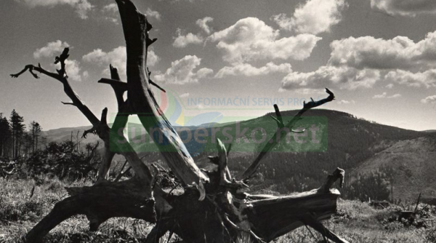 Výstava Jan Byrtus – Tváří v tvář přírodě
