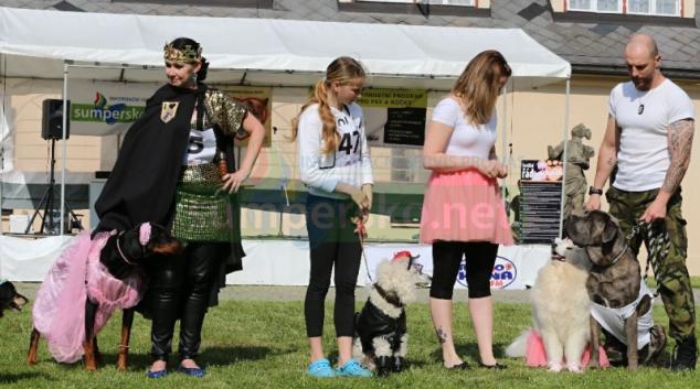 HAF! Který kostým překvapí na jubilejním desátém ročníku psí show?
