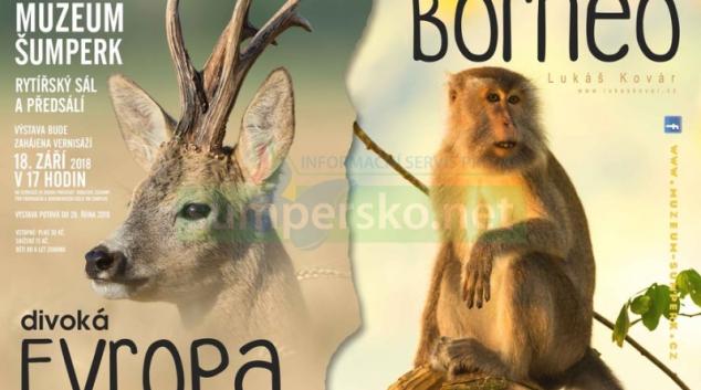 Divoká Evropa, tajemné Borneo
