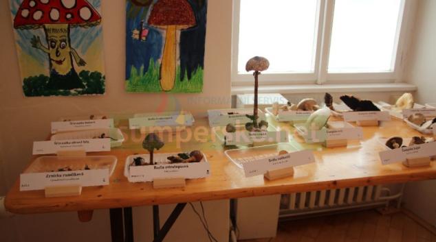 Dvacátý ročník Výstavy hub v Šumperku přinesl i nejedno ohlédnutí