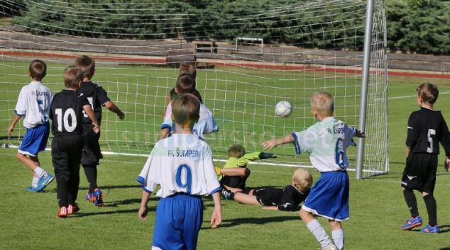 Krajské sportovní dotace uspokojí 175 žadatelů