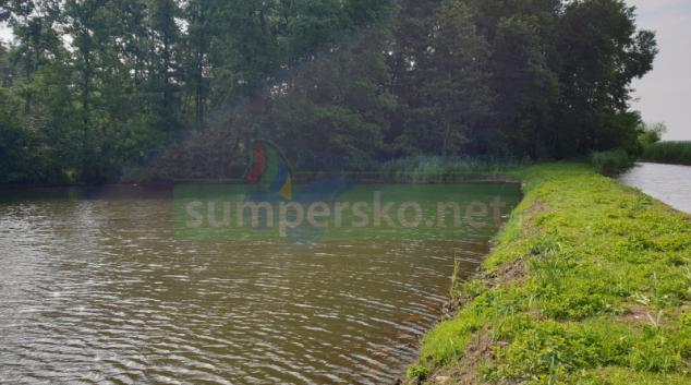 Velký mokřad na Hodonínsku je obnoven
