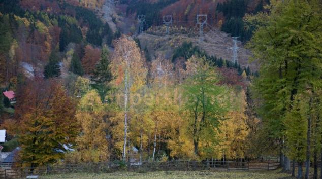 Hejtmanství jednalo se starosty a Lesy ČR o rušení lesních správ