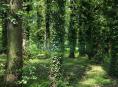 Město Šumperk vydá na údržbu stromů milion a čtvrt