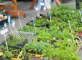 Farmáři v Šumperku opět nabídnou své produkty