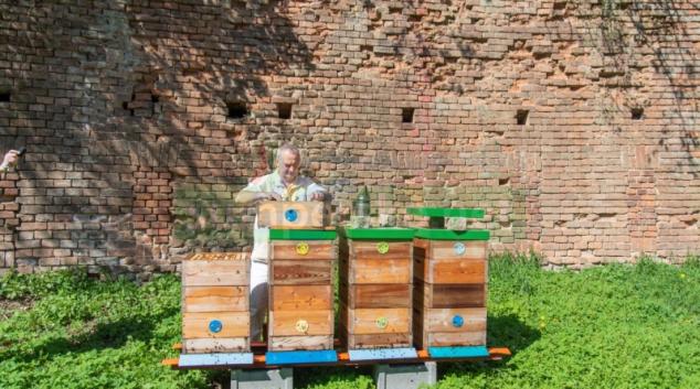 FN Olomouc má vlastní med