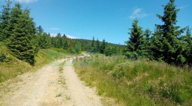 Cyklističtí vytrvalci změří síly na jesenických trasách UltraBikers