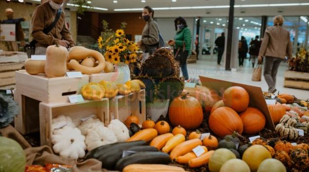 Podzimní Flora Olomouc se odehraje v říši ovoce a zeleniny