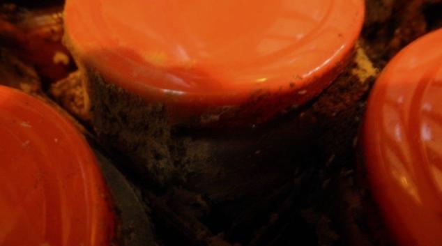 Další tuna zkažených potravin z Vietnamu směřovala na český trh