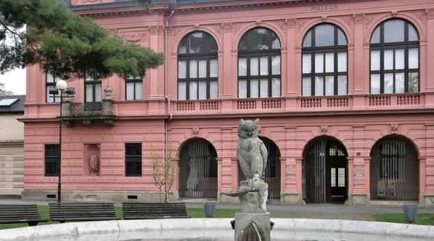 """Výstavu """"Lišejníky a mechorosty CHKO Jeseníky"""" připravují v Šumperku"""