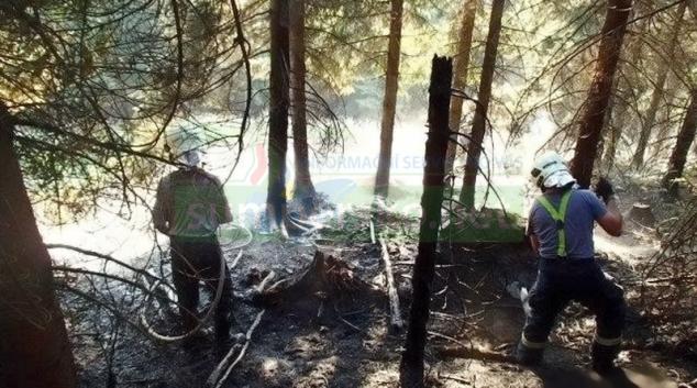Dva požáry v lesích na Šumpersku způsobila nedbalost