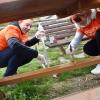 Dobrovolnické dny na ranči Pomněnka      zdroj foto: V. Sobol