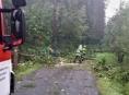 V souvislosti s bouřkou vyjížděli hasiči v Olomouckém kraji k deseti událostem