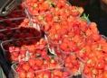 První pátek v červnu obsadí Hlavní třídu v Šumperku Farmářské trhy