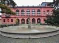 Muzeum zve na výstavu knižních obálek Adolfa Borna
