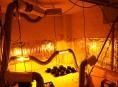 FOTO: Kriminalisté na Hanušovicku zajistili indoorovou pěstírnu konopí