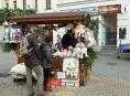 Město Šumperk nabízí k pronájmu stánky na prodej vánočního sortimentu