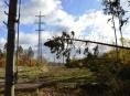 Energetikům způsobil orkán Herwart škody za desítky milionů