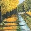 Podzimní alej / akryl - 500,-      zdroj: PONTIS