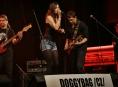 Muzikanti máte zájem si zahrát v příštím roce na Blues Alive?