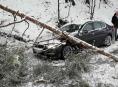 Strom spadl na vozidlo v Bohdíkově - Komňátka