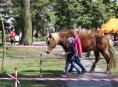 Děti v Zábřehu si budou hrát na kovboje