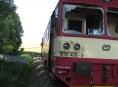 Správa železniční dopravní cesty kácí podél cest
